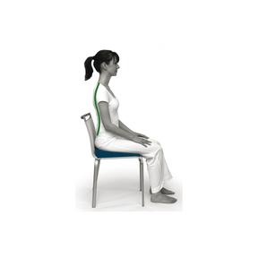 Sissel Keilkissen - Sit Standard mit Bezug