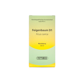 Phytomed Knospen-Mazerat Feigenbaum D1