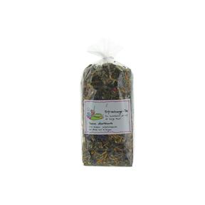 Herboristeria Genusstee Erfrischungs-Tee